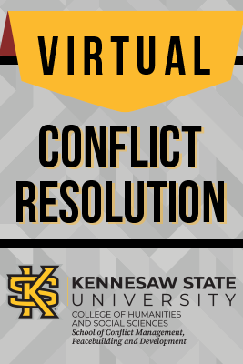 Virtual conflict management
